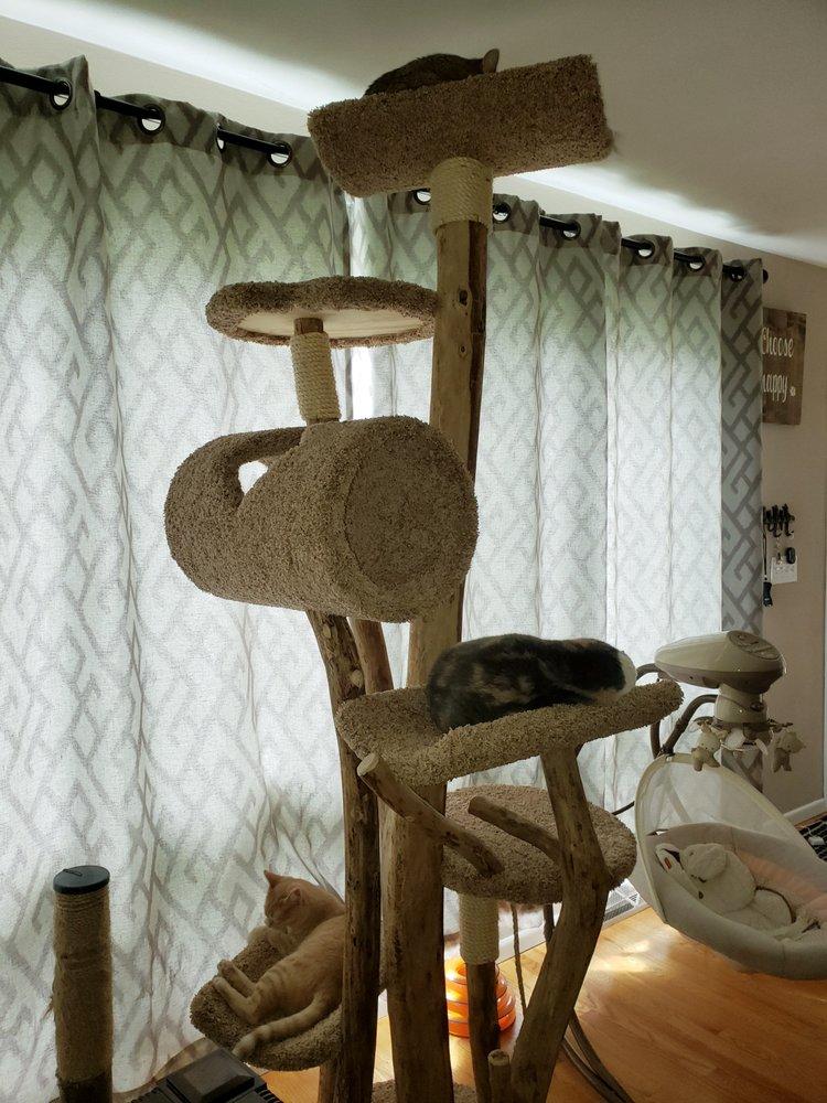 Paw Friendly Cat Furniture: 2910 Esser St, Cross Plains, WI