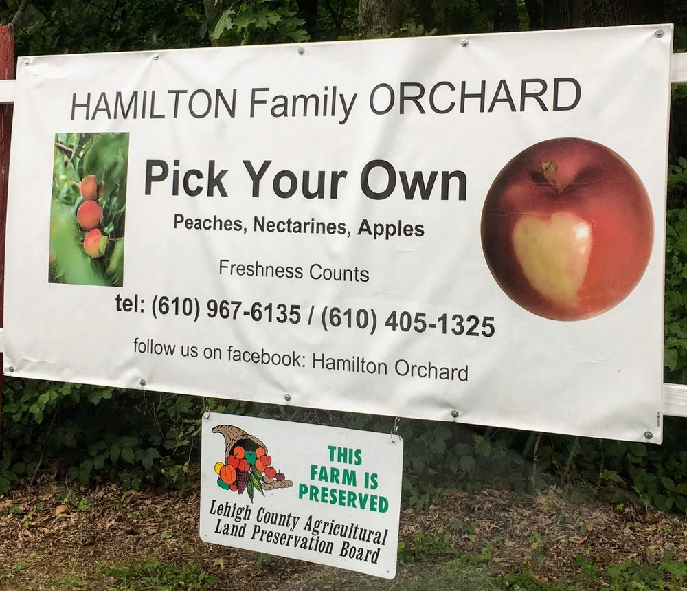 Hamilton Family Orchards: 7786 Steinsburg Rd, Coopersburg, PA