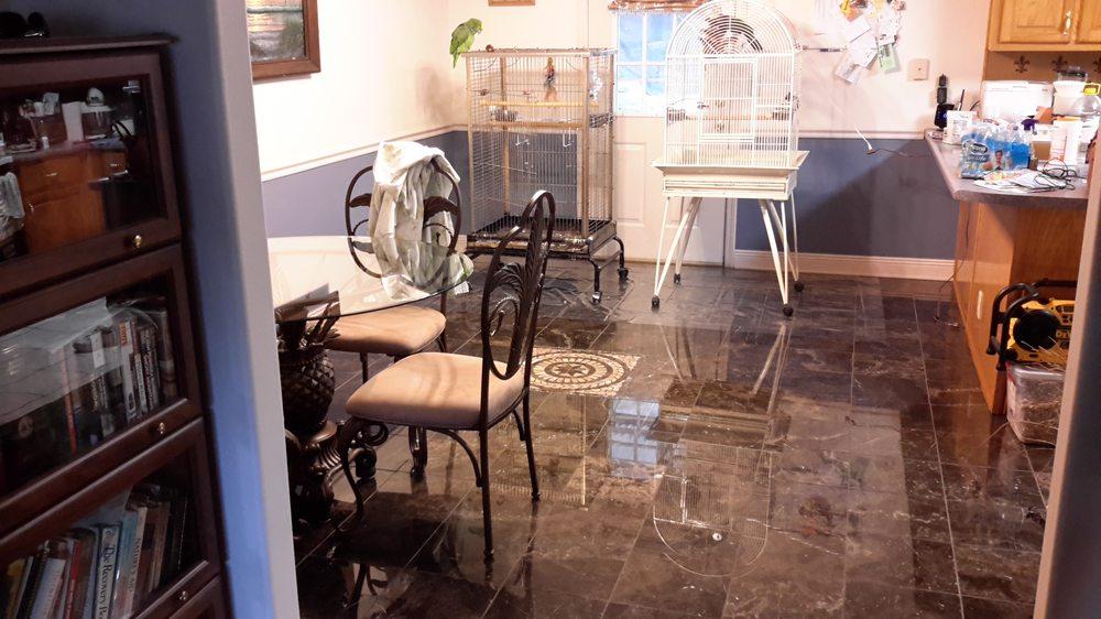 Parrot Home Services: 4182, Milton, FL