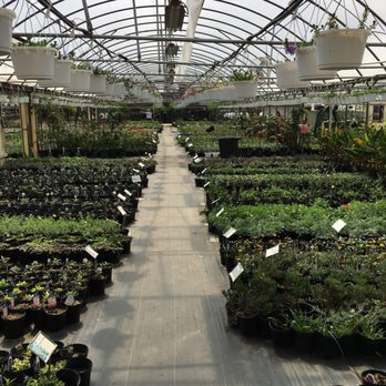 Photo Of Stegall S Nursery Plant Farm Fort Worth Tx United States