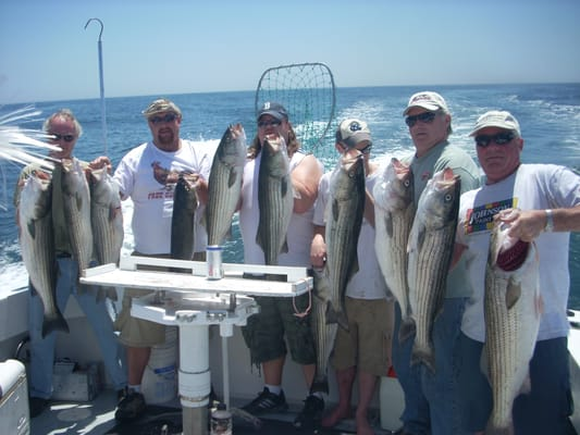 Reel to reel sportfishing charters get quote boat for Newport ri fishing charters