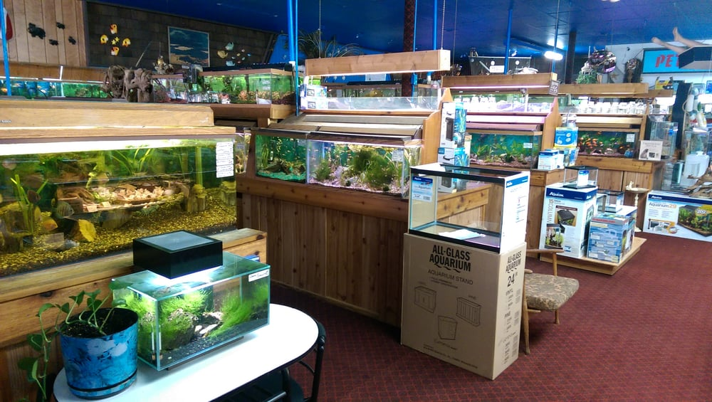 aquatropics 11 reviews local fish stores 3549
