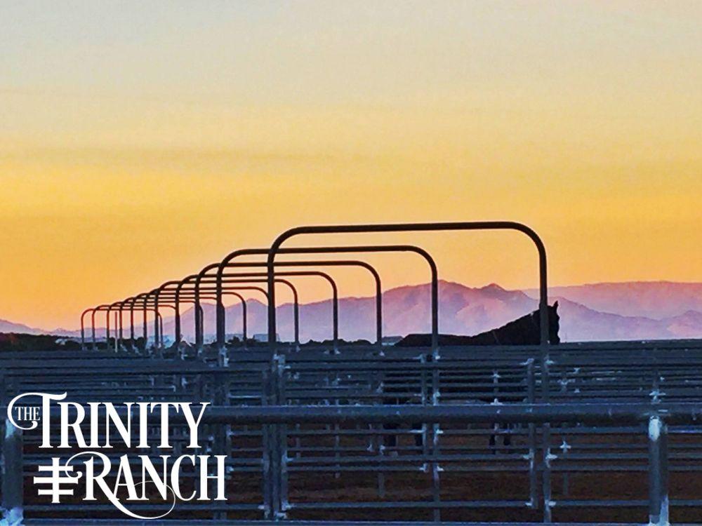 The Trinity Ranch: 81 Ranch Rd, Lamy, NM