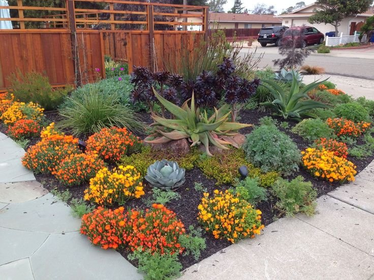 Drought Tolerant Plants Landscape Design Fence Mulch Yelp