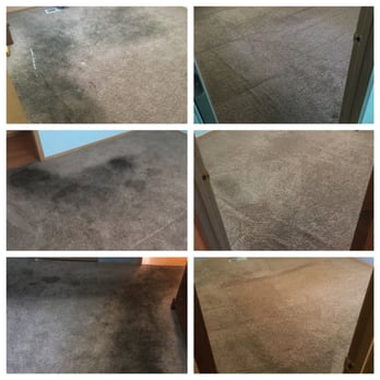 Blue Ribbon Carpet Amp Upholstery Cleaning 23 Photos Amp 30
