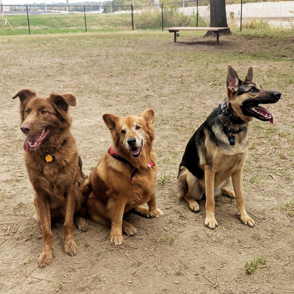 St. John's Community Dog Park: 11333 St John Church Rd, St. Louis, MO