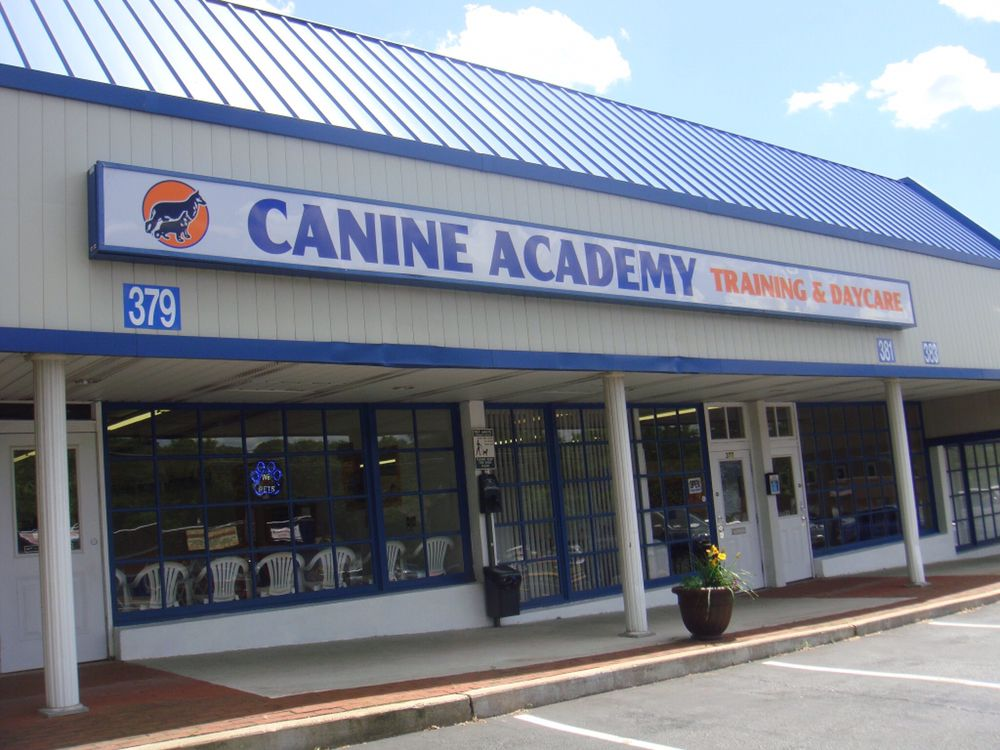 Canine Academy: 377 W Lincoln Hwy, Penndel, PA