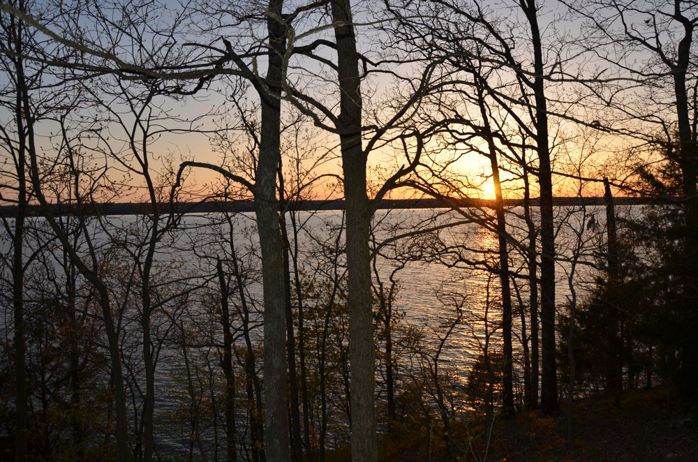 Land Between the Lakes: 238 Visitor Center Dr, Golden Pond, KY