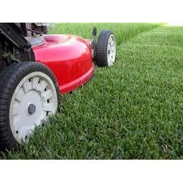 Baltazar's Lawn Care: 417 Hillcrest St, Russellville, AL