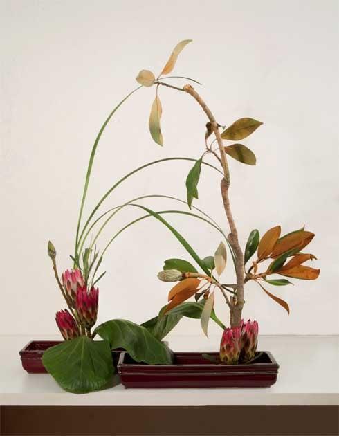 Yukiko S Floral Design Studio