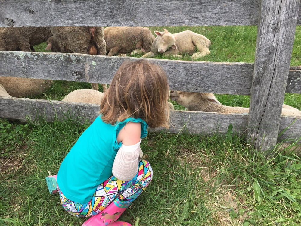Slate run living historical farm 20 photos landmarks for Southern living phone number