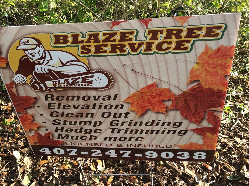 Blaze Tree Service