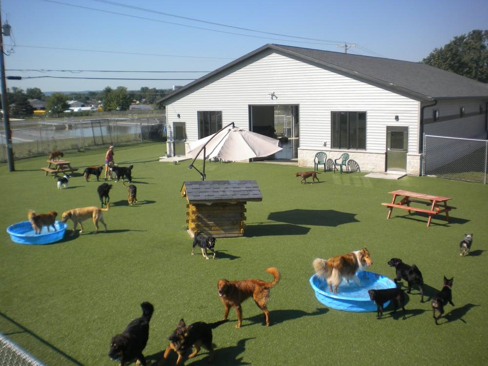 Diggity Dog Daycare: 600 Fisherman's Rd, La Crosse, WI