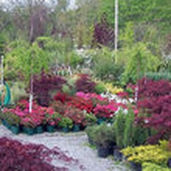 Photo Of Riggio S Garden Center Es Flower Pe Ct United States