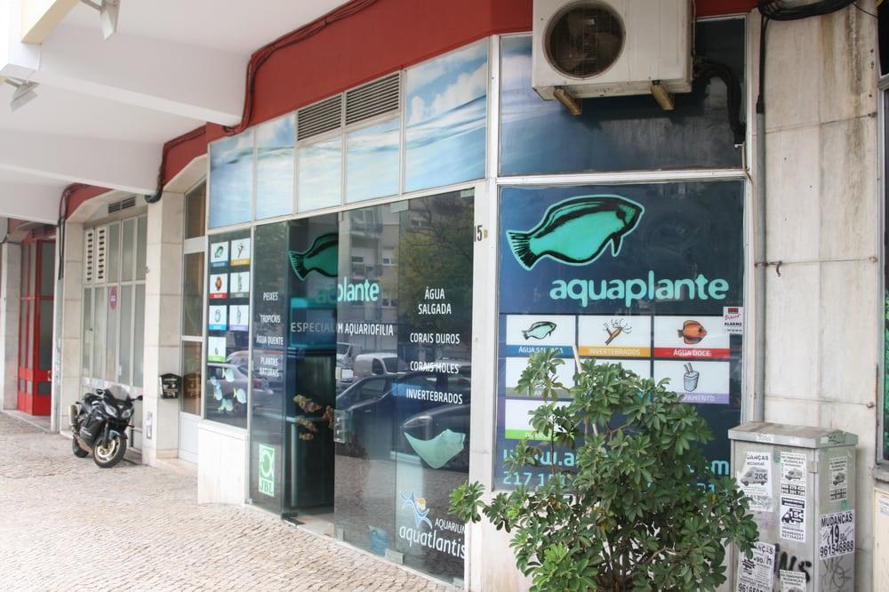 bate papo lisboa sex shop em portugal