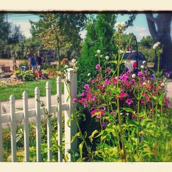 Amazing Photo Of Grass Roots Nursery   New Boston, MI, United States. Butterflies On