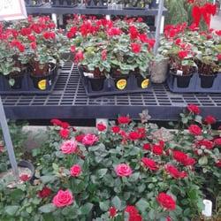 photo of houston garden center houston tx united states - Houston Garden