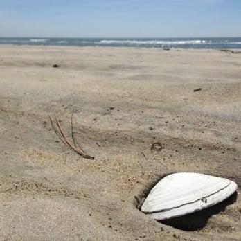 Photo Of Chincoteague Island Va United States Beach