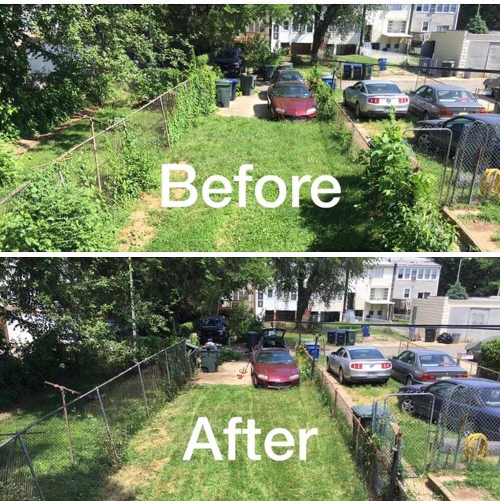Backyard Clean Up - [audidatlevante.com]