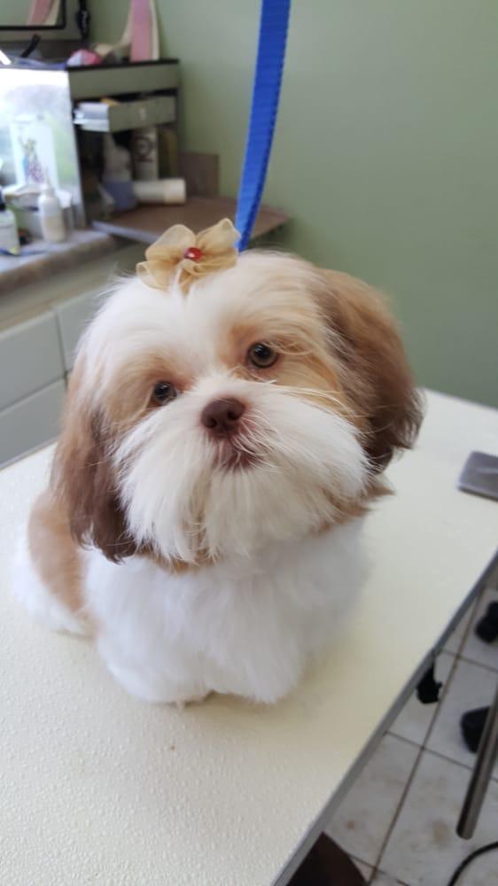 Sweet little baby yelp for A new salon seneca sc