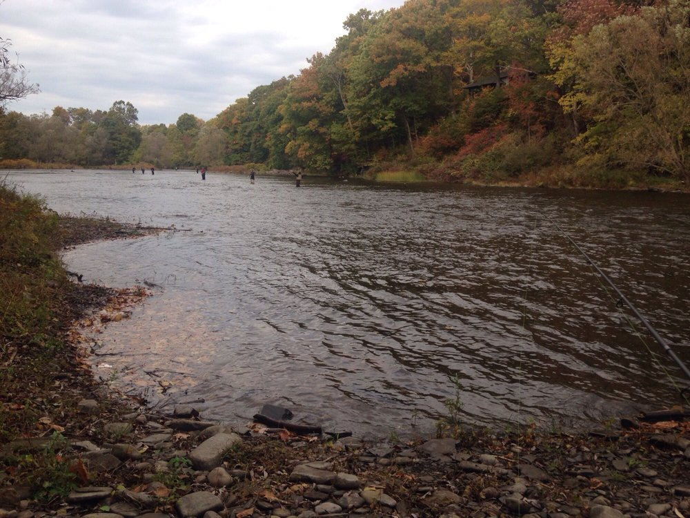 Douglaston Salmon Run: 301 County Route 5, Pulaski, NY