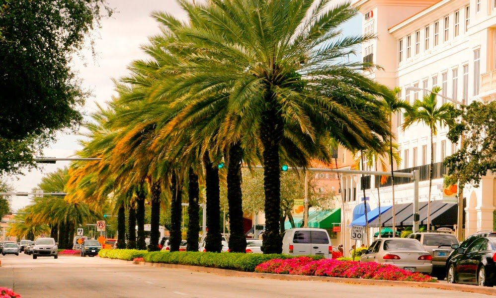 Miracle Mile & Downtown Coral Gables: 220 Miracle Mile, Coral Gables, FL