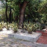 Jard n bot nico chapultepec 60 fotos parques y for Jardin botanico numero telefonico