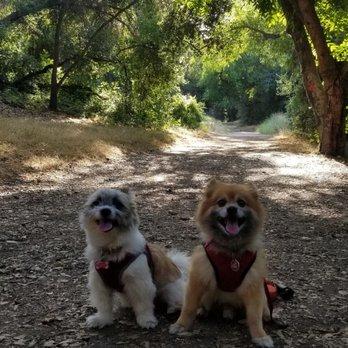 Michael D  Antonovich Trail - 822-1098 S Ave, San Dimas, CA