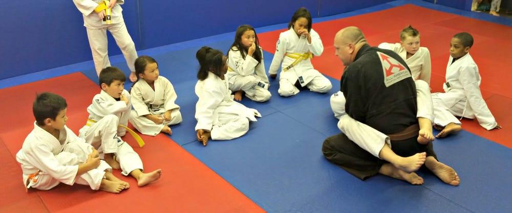 All American Martial Arts Academy Greenville Academy MMA