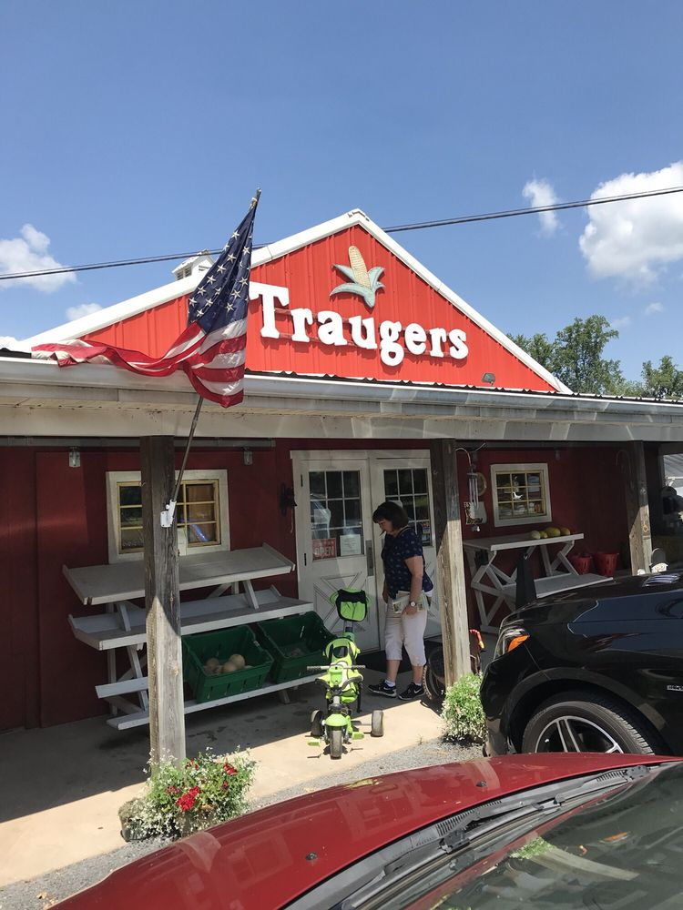 Traugers Farm Market: 370 Island Rd, Kintnersville, PA