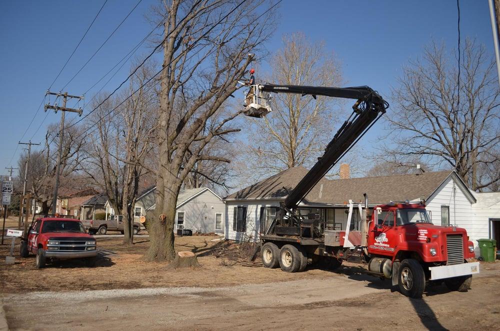 One Life Tree Service