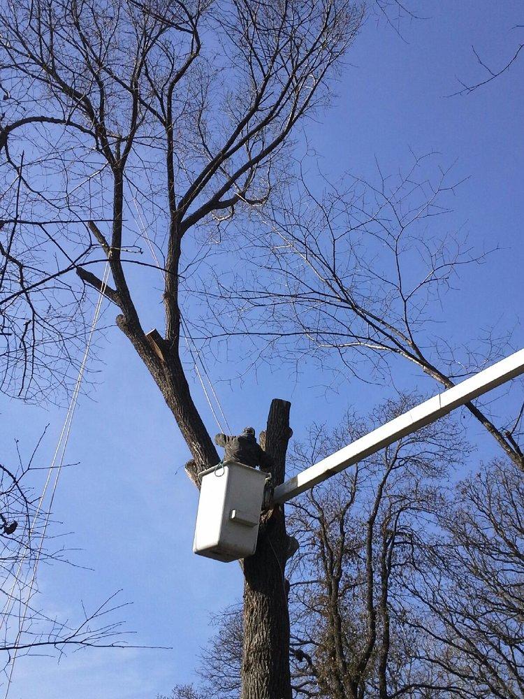 Slawson's Tree Service: Edm, Arcadia, OK