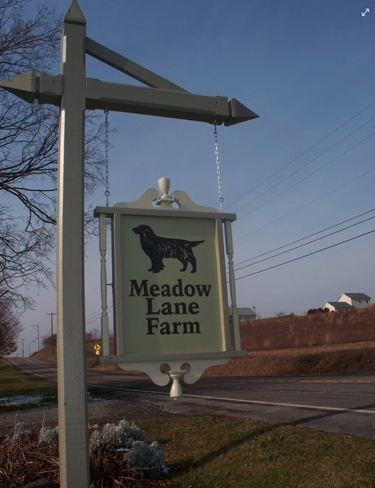 Meadow Lane Kennels: 1838 PA-254, Orangeville, PA