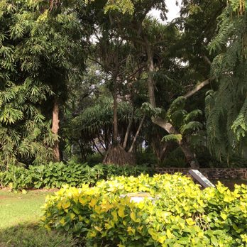 Attirant Photo Of Foster Botanical Garden   Honolulu, HI, United States
