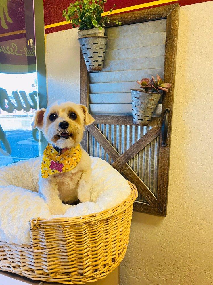 Bia's Pet Stop: 5110 N Dysart Rd, Litchfield Park, AZ
