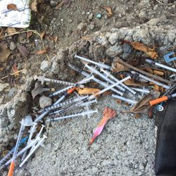 Photo Of Crescent Cove   San Francisco, CA, United States. Drug Syringes