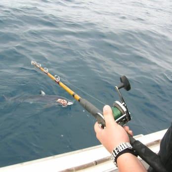 California shark fishing 15 photos fishing 1800 dana for Shark fishing pole