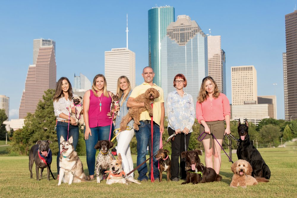 Beyond The Dog: 2990 Richmond Ave, Houston, TX