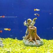 Charming ... Photo Of The Ocean Floor   Phoenix, AZ, United States ...