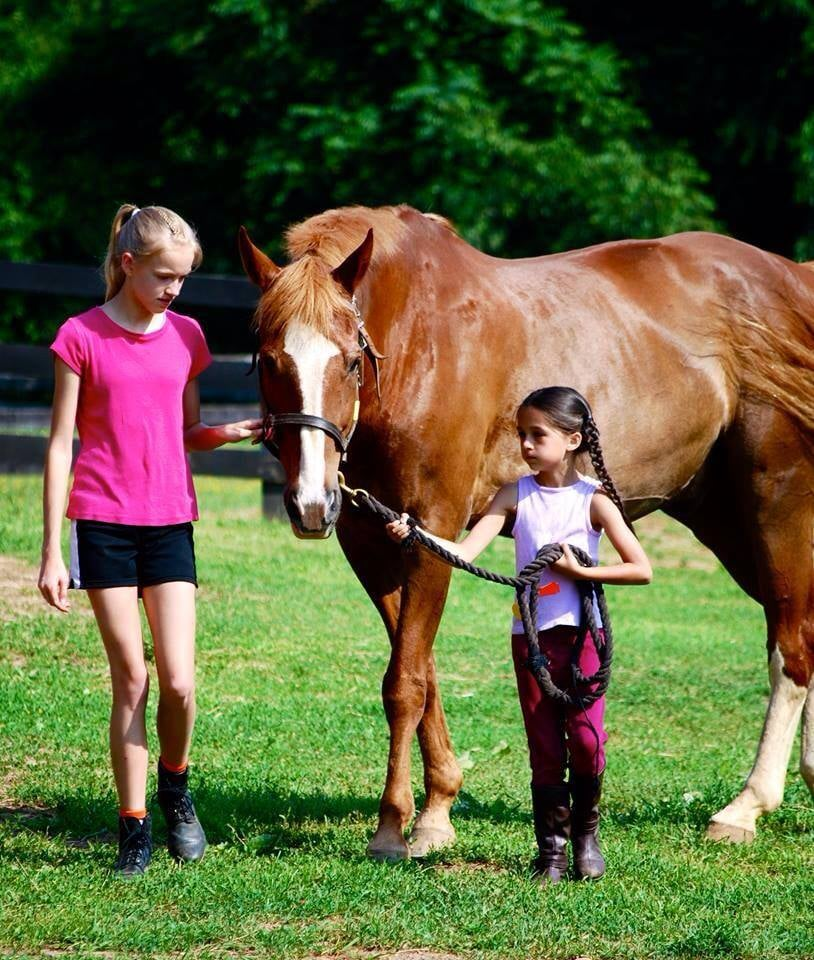 Twin Oaks Riding Academy: 40788 Red Hill Rd, Leesburg, VA