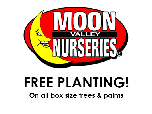 Moon Valley Nurseries: 1875 S Arizona Ave, Chandler, AZ