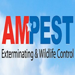 Ampest Exterminating & Wildlife Control: 1020 W Fullerton Ave, Addison, IL