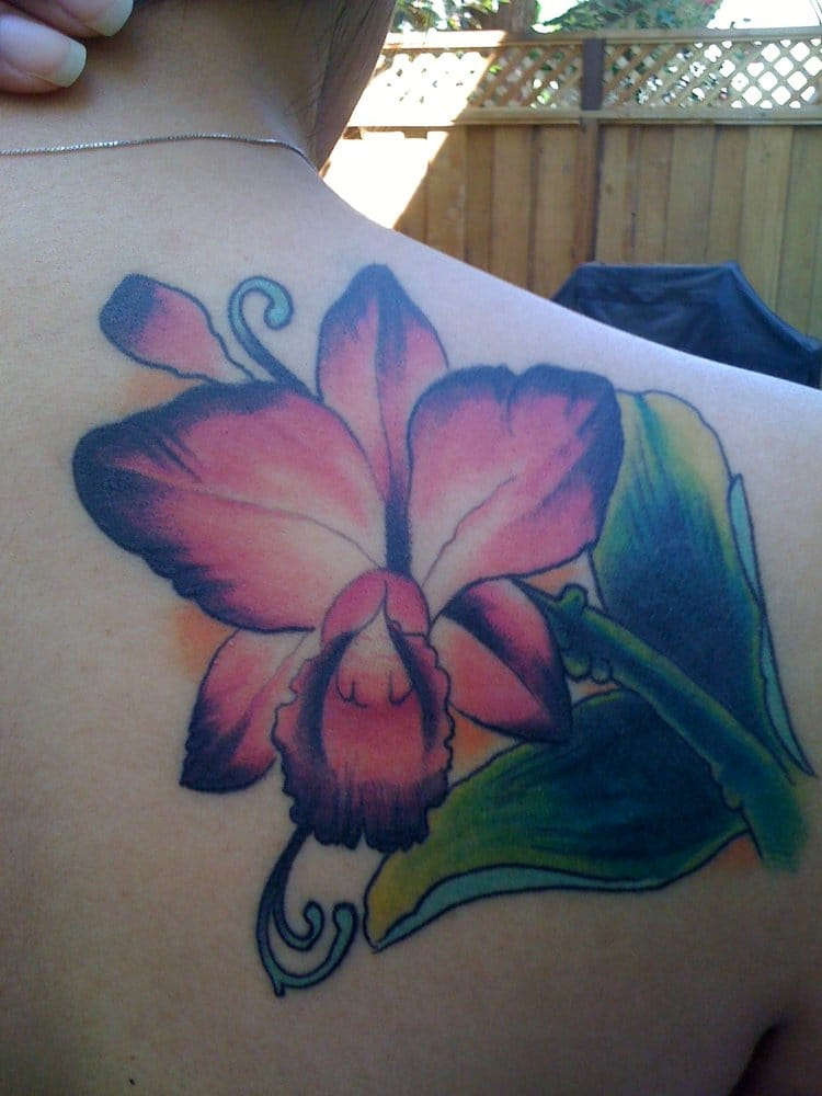 Cattleya Orchid Cover Up By Josh Hartley Yelp