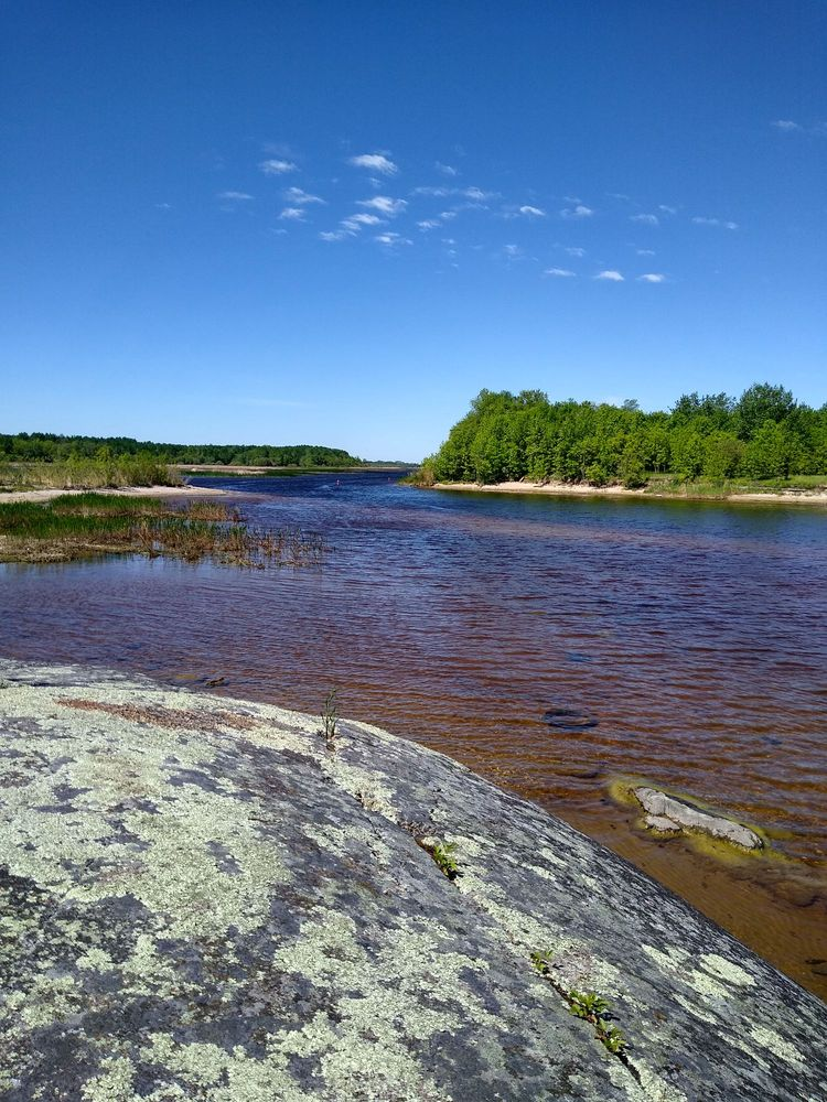 Zippel Bay State Park: 3684 54th Ave NW, Williams, MN