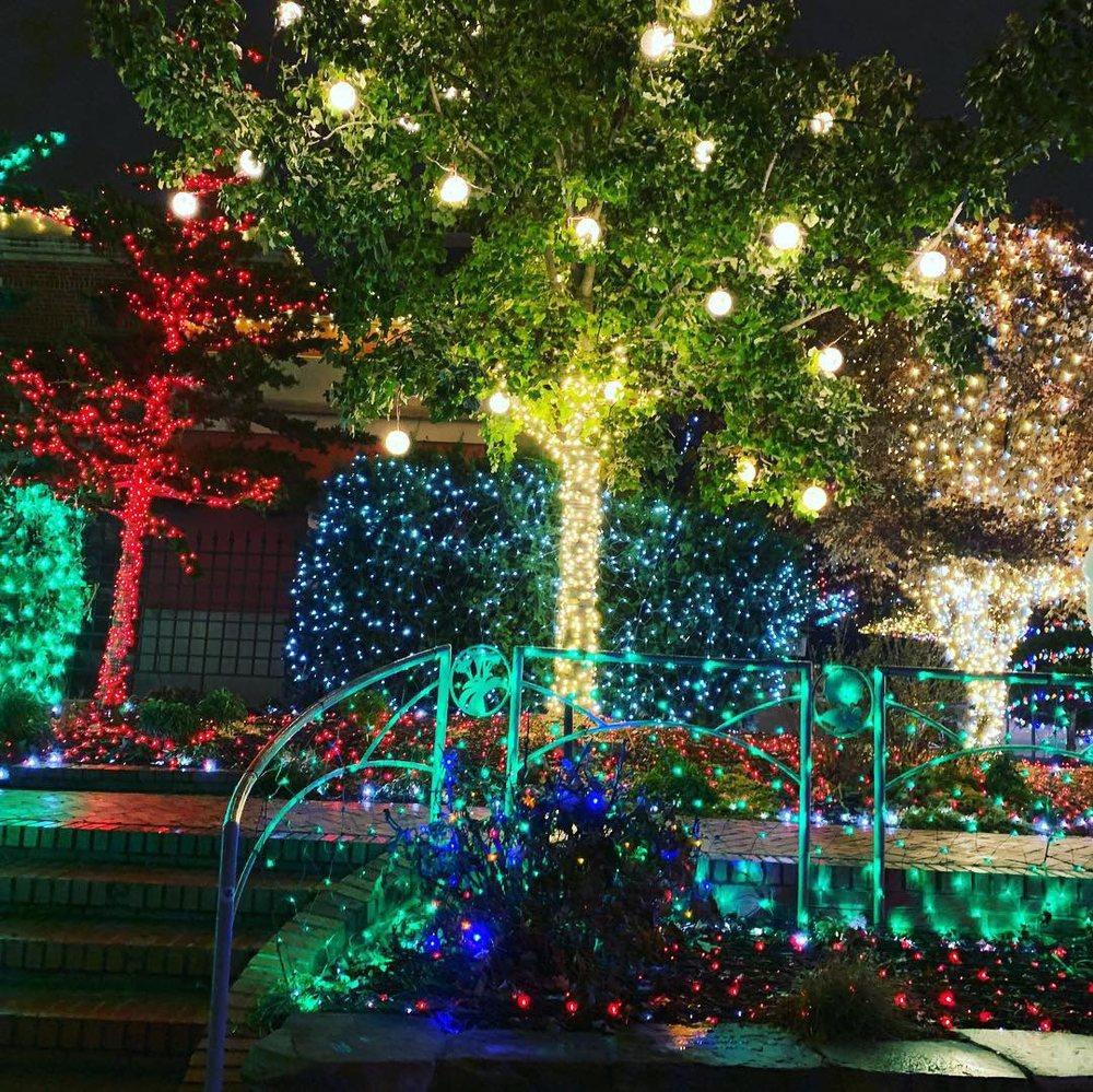Lights of the Ozarks: Fayetteville, AR