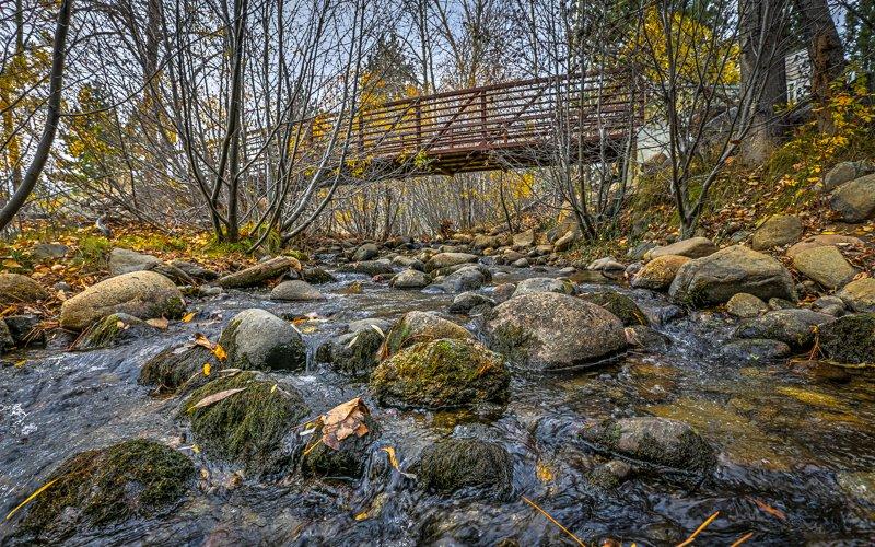 Lower Galena Creek Trail - Jones-Whites Loop - Church's Pond