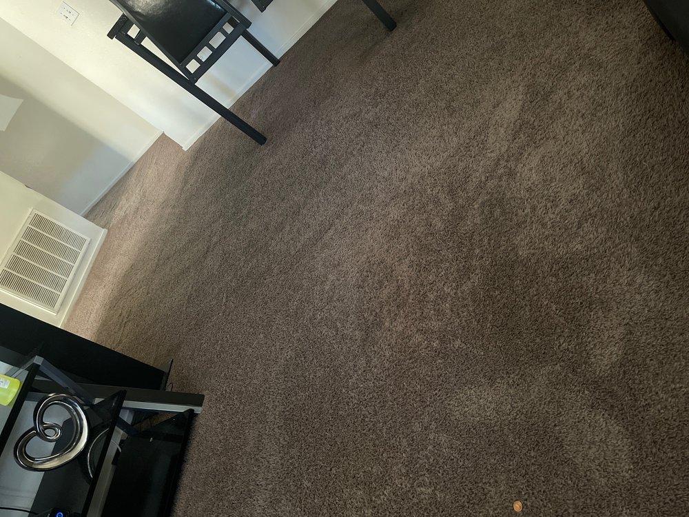 Pure Clean Carpet & Tile Care