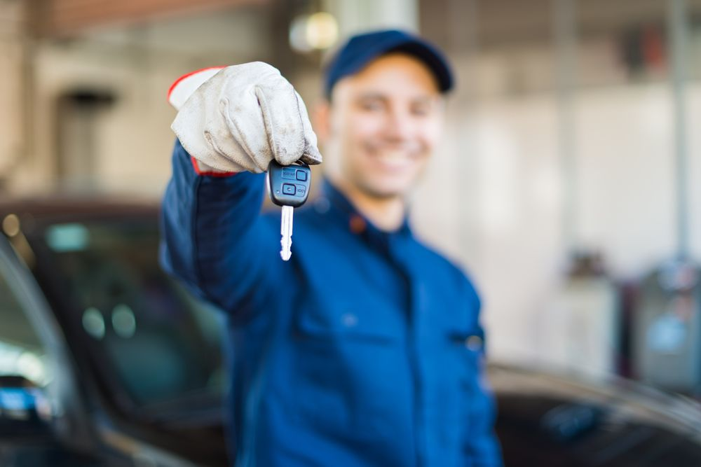 Towing business in Palm Harbor, FL