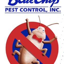 Photo Of Blue Chip Pest Control Huntington Beach Ca United States