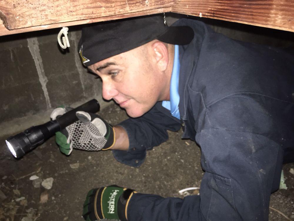 Hammond Inspection Services
